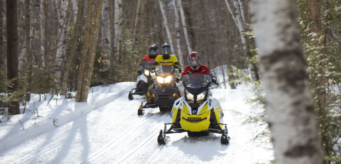Snowmobiliers on trail