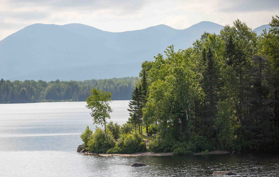 a lake with trees and mountains in background